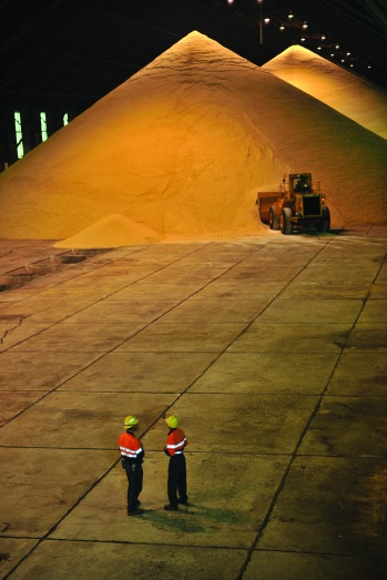 Bulk Sugar terminal two men with front end loader in rear